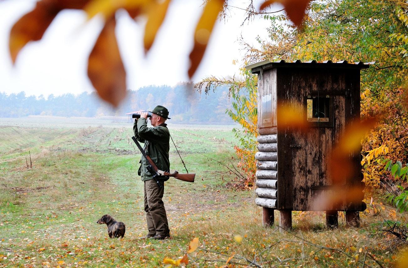 Auch bei der Jagd wird fast immer ein Fernglas benötigt